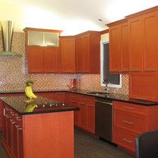 Contemporary Kitchen by Dynamic Kitchen Design & Interiors