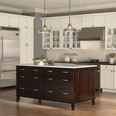 Contemporary Kitchen Cabinets by All Teriors