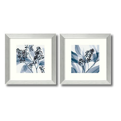 Amanti Art - Eucalyptus - Set by Steven N. Meyers - Explore the beauty of nature and flowers with these X-ray photography prints. According to Steven Meyers, by using X-rays instead of light, an unusual inner vision can be revealed, as nature shows us textures, details and shadows that would otherwise not be seen.