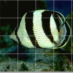 Picture-Tiles, LLC - Sea Life Photo Shower Tile Mural 12 - * MURAL SIZE: 24x36 inch tile mural using (24) 6x6 ceramic tiles-satin finish.