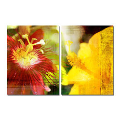 READY2HANGART.COM - Ready2hangart Alexis Bueno Tropical Hibiscus (2-PC) Canvas Wall Art Set - This Tropical Hibiscus was inspired by the Caribbean Island of Antigua; full of color and beauty. The two-toned hibiscus flowers are offered as a 2-PC Canvas Art Set. It is fully finished, arriving ready to hang at your home or office.