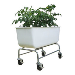 Food Map Container - I've loved these white tub herb planters on wheels since I first saw them at True Food (Dr. Andrew Weil's restaurant in Phoenix). My husband said he hopes they don't actually use the herbs growing outside the restaurant in their food. He's afraid people walking by might spit in them.