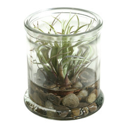 D&W Silks - D&W Silks Easter Grass in Candle Jar - If you're looking for that finishing touch to a shelf or end table, look no further than to this Easter grass piece, set with river rock and faux water inside a small candle jar. This terrarium comes assembled as pictured, with no watering or sunlight necessary to maintain it's color and shape. Use this for an accent that will last for years to come!