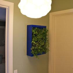 Vertical Wall Planter - urban ecology