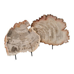 Salvatecture Studio - Pair of Petrified Wood Slices on Stands - When your home accessories have taken centuries in the making, you know they'll make an impact. These two slices of petrified wood come on iron stands so you can immediately appreciate the beautiful design only Mother Nature can create. Use them as a bold organic centerpiece on your tabletop or shelf.