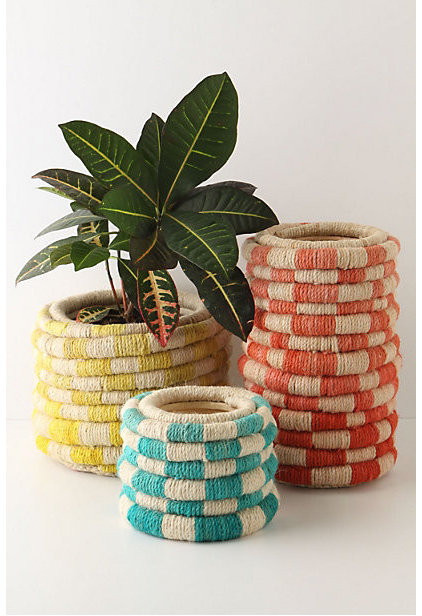 modern indoor pots and planters by Anthropologie