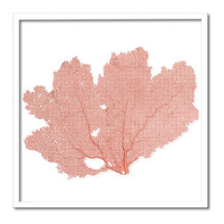 Kathy Kuo Home - Avalon Small Coastal Beach Coral Sea Fan Wall Decor - by Karen Robertson - This beautiful small framed sea fan was harvested from the ocean and tinted a delicate coral salmon shade by hand. The delicate lines and organic shape make it the perfect choice for contemporary and nautical-inspired spaces.  This item is made to order, please allow up to 3 weeks for production.