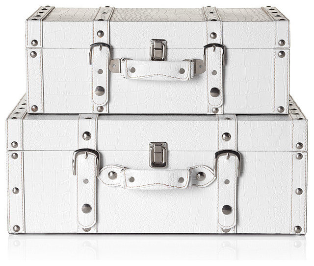 Traditional Decorative Trunks by Z Gallerie