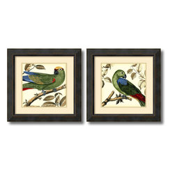 Amanti Art - Martinet 'Tropical Parrot- set of 2' Framed Art Print 23 x 23-inch Each - Who's a pretty bird?  These vintage styled tropical friends add a spark of lively color and feathered charm to your wall; making a great decor accent for any room in your home or office.