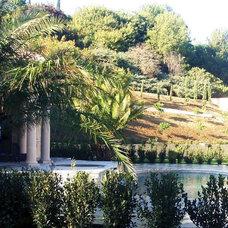 Mediterranean Landscape by THOMAS KYLE:  Landscape Designer