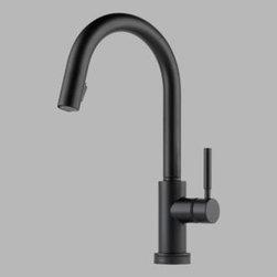 Brizo - Brizo - Solna: Single Handle/Hole Pull-Down Kitchen Faucet -64020LF-BL - W/Smarttouch