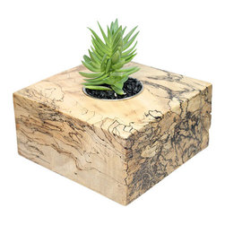 "MODgreen - Crassula - 6"" Exotic Hardwood Potted Cactus and Succulents - Native to South East Asia, this Spalted tamarind planter (Tamarindus indica) presents a really unique and rare pattern as a result of the spalt process subjected in the warm and damp conditions in the forest. The patterns are usually created by insects which also leave some little holes on the wood. Native to South Africa we have selected this cute plant commonly known as 'Campfire' to bring life and style to your interior design. Place indoors under bright light. Water only twice a month and avoid spilling when watering. Tung oil or beeswax will help extend the lifespan of your planter and maintain a shiny look."