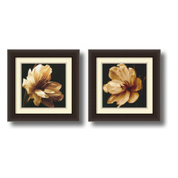 Amanti Art - Timeless Grace - Set by Charles Britt - A timeless symbol of feminine grace, these magnolia's are photographed in classic sepia tones like an antique portrait. At once nostalgic yet modern, these timeless sets will lend any decor--whether contemporary or traditional--an air of refinement.