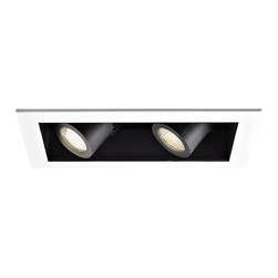 """WAC - WAC 40 Degree 2700K LED Recessed Housing Double Flood Light - Offer a smooth finished look to your ceilings with this 2700K LED recessed housing designed for new construction projects. A white finish trim surrounds the black housing which holds two dimmable flood lights with a 40 degree beam spread. For non-insulated ceilings. ENERGY STAR® rated. ETL and cETL listed. Compatible with WAC recessed lighting products. 4"""" WAC new construction double flood light recessed housing. 40 degree beam spread. 2700K color temperature; also available in 3000K. Includes two 16 watt LEDs. Light output is 1100 lumens per light. Comparable to two 75 watt MR16 bulbs. Bulbs average 50000 hours at 3 hours a day. 100 percent to 10 percent dimming. CRI is 85. 120 to 277 volts. ENERGY STAR® rated. For non-insulated ceilings. 19 5/8"""" wide. 6"""" high.  4"""" WAC new construction double flood light recessed housing.  40 degree beam spread.  2700K color temperature; also available in 3000K.  Includes two 16 watt LEDs.  Light output is 1100 lumens per light.  Comparable to two 75 watt MR16 bulbs.  Bulbs average 50000 hours at 3 hours a day.  100 percent to 10 percent dimming.  CRI is 85.  120 to 277 volts.  ENERGY STAR® rated.  For non-insulated ceilings.  19 5/8"""" wide.  6"""" high."""