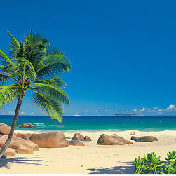 Seychellen Wall Mural - Invite the island country of Seychelles into your home with this breathtaking beach vista.