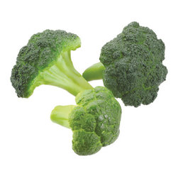Silk Plants Direct - Silk Plants Direct Broccoli (Pack of 24) - Pack of 24. Silk Plants Direct specializes in manufacturing, design and supply of the most life-like, premium quality artificial plants, trees, flowers, arrangements, topiaries and containers for home, office and commercial use. Our Broccoli includes the following:
