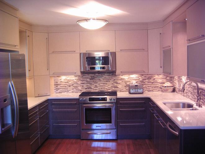 Contemporary Kitchen Cabinets by Kitchen Design Plus