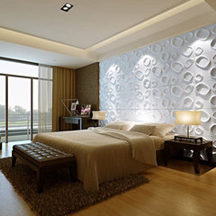 modern accessories and decor by 3D Wall Panels,Canada