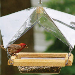 Songbird Essentials - Crystal Clear - Wonderful view of birds,feeder and seed protected by clear cover. Holds 4 cups of seed or mealworms. Drainage holes.