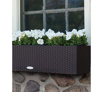 traditional outdoor planters by Burpee