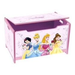 Disney Princess Toy Box - Little princesses can store their books, stuffed animals and more in this Disney Princess Toy Box featuring four princesses. I like that it's made out of sturdy wood, so kids can use it as a seat when closed.