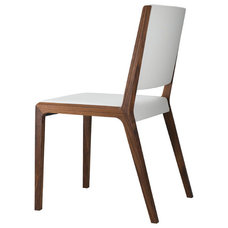 Modern Dining Chairs by modernpalette