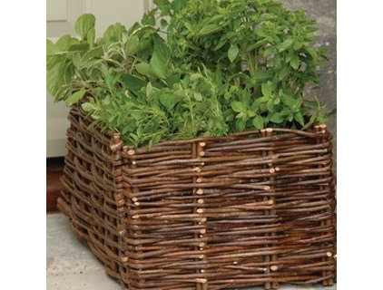traditional outdoor planters by Garden Boutique