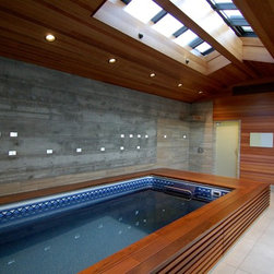 Original Endless Pools®, Modern Design Pool - Rich wood tones and plenty of natural light surround this Endless Pool with warmth. The room's clean design features skylights in the slightly vaulted ceiling and plenty of long horizontal lines for added depth.