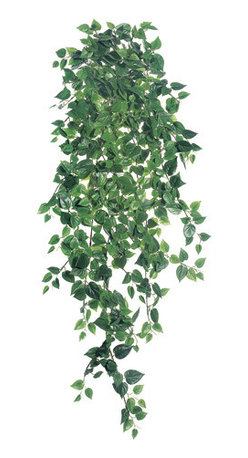 Silk Plants Direct - Silk Plants Direct Philodendron Vine Hanging Plant (Pack of 6) - Silk Plants Direct specializes in manufacturing, design and supply of the most life-like, premium quality artificial plants, trees, flowers, arrangements, topiaries and containers for home, office and commercial use. Our Philodendron Vine Hanging Plant includes the following: