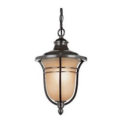 Trans Globe Lighting - Trans Globe Lighting Rustic Lodge Oil Rubbed Bronze Outdoor Hanging Light - New for Autumn an outdoor collection oil rubbed bronze wall brackets hanging lanterns post top lamps and pole lamps. Many sizes and styles. Trans Globe Lighting is proud to be a leading manufacturer of residential lighting lamps and home decor since 1986. Born from the hopes and aspirations of two entrepreneurial spirits Trans Globe Lighting is a true testament to the American dream. Their company mission from the start was exceeding the industry standard in value style and selection. Today that mission remains stronger than ever.  In 2005 they expanded into a larger distribution facility in beautiful Valencia CA. This enables them to stock a steady on-hand inventory of over 3000 SKU's ranging from small outdoor porch lights to massive Bohemian crystal chandeliers. Features include UL Listed for Wet locations Comes with 3' chain and wire Frosted amber shade Vintage outdoor lighting Matching outdoor collection. Specifications Finish: Oil Rubbed Bronze Material: Metal Bulb Type: Medium - E-26 - E-27 - Type A Number Of Bulbs: 1 Watt Per Bulb: 100 Wattage: 100 Bulbs Included: No Suitable For: For outdoor use Energy Saving: No.