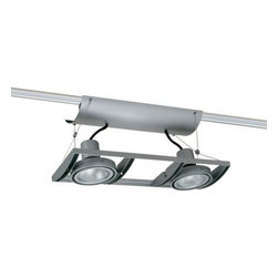Juno Lighting - Trac-Master XT16201 Avio 2-lt Low Volt MR16 Track Light - AVIO combines multi-lamp fixture functionality and aesthetics with a trac-based product that is easy to specify, cost effective to install and simple to reconfigure. AVIO's precision, die-cast frame with curved spanners creates a unique, consistent dropped visual plane of clustered lighting.