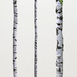Walls Need Love - Birch Tree Wall Decals - The tree wall decals are 9ft tall to accommodate tall ceilings or you can easily trim or slant them in standard height ceilings.