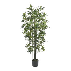 "Nearly Natural - 6' Bamboo Silk Tree (Green Trunks) - Not for outdoor use. 1160 leaves . Lush foliage and tropical appeal. 6 trunks. Included container size: 8 in. W X 7 in. H35 in. W X 35 in. D X 6 ft. H (11lbs). Delicate and refined, perhaps no other tree packs as much personality in such a small space as the Bamboo Tree. And this stunning recreation from Nearly Natural is spot on. Featuring 6 ""still green"" trunks sprouting upward and over 1,100 silk bamboo leaves, this tree lends an airy, oriental appeal to dens, offices, rec rooms, or anywhere else a touch of the Far East is needed. Makes a great gift!"