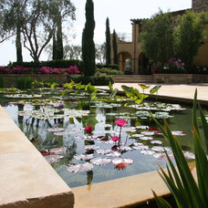 Outdoor Fountains And Ponds by Pure Water Pools, Inc.