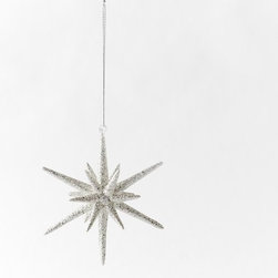 Glitter Snowflake Ornament - I know it's just barely November, but I couldn't help myself. I want to scatter pretty snowflake ornaments like this one all over my house already. I think it would make for really modern, festive decor.