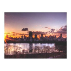 Central Park Sunrise Canvas Art by Ariane Moshayedi - About Trademark Global Inc.Located in Lorain, Ohio, Trademark Global offers a vast selection of items for your home and lifestyle. Whether you need automotive products, collectibles, electronics, general merchandise, home and garden items, home decor, house wares, outdoor supplies, sporting goods, tools, or toys, Trademark Global has it at a price you can afford. Decor items and so much more are the hallmark of this company.