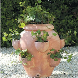 Terra-Cotta Round Fishbowl Tascandi Strawberry Jar Planter - This large strawberry pot would most likely need an outdoor space, but it still wouldn't take up too much room on a deck or patio. I love the look of natural terra-cotta.