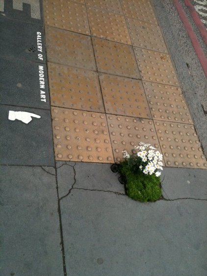 by thepotholegardener.com