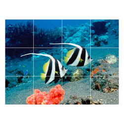 Picture-Tiles, LLC - Sealife Photo Kitchen Bathroom Tile Mural  36 x 48 - * Sealife Photo Kitchen Bathroom Tile Mural 1857