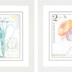 Paragon Decor - Nautical II Set of 2 Artwork - Whimsical sea creatures are matted in white and framed in white molding for a fun coastal look.