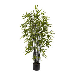 Nearly Natural - 4' Black Bamboo Tree - The Black Bamboo gets its name from its jet black bamboo chutes, and is one of the most sought-after bamboo plants. This perfect reproduction beautifully captures everything that makes the black bamboo special, from the straight black chutes to the deep green explosion of the bamboo leaves. This will make a striking decoration for any home or office, and also makes an eclectic gift as well.