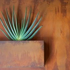 Contemporary Indoor Pots And Planters by Potted