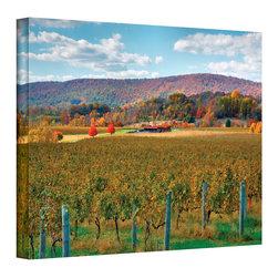 ArtWall - Steven Ainsworth 'Vineyard in Autumn' Gallery-Wrapped Canvas - Artist: Steven Ainsworth Title: Vineyard in Autumn Product type: Gallery-wrapped canvas