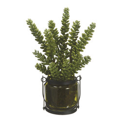 Silk Plants Direct - Silk Plants Direct Donkey Tail (Pack of 1) - Pack of 1. Silk Plants Direct specializes in manufacturing, design and supply of the most life-like, premium quality artificial plants, trees, flowers, arrangements, topiaries and containers for home, office and commercial use. Our Donkey Tail includes the following: