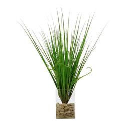 """Vickerman - Grass n' Glass - 28"""" Silk grass arrangement in glass vase"""