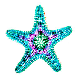Dr. Paula Fontaine/Radiant Art Studios - X-ray Photography Starfish Under Acrylic - Whimsical X-ray Photography by Dr. Paula Fontaine who uses medical x-ray technology to create stunning and vibrant art. The originally black and white images are color enhanced through a digital hand-painting technique to create her unique pieces. The prints are mounted under 1/4 inch acrylic and have an attached gallery-style float mounting system for easy hanging.