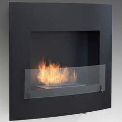 Eco-Feu - Wynn Wall Mounted Ventless Bio Ethanol Fireplace, Matte Black - The Wynn Wall Mount Fireplace  offers a contemporary and sophisticated look to any space. Offered in your choice of a matte black or stainless steel, Wynn is certain to accent any space. This fireplace offers an eco-friendly flame that is odorless. Bio Ethanol, an alternative fuel source produced from plants, only emits water vapor and carbon dioxide into the air, therefore no chimney or flue is needed. Although ethanol fireplaces aren't intended for use as a primary heat source, the Wynn model produces approximately 6,500 btu with the help of its stainless burner, which will change the noticeable temperature in a room of approximately 400 - 500 square feet. For aesthetic appeal and safety, this fireplace includes a pane of tempered glass that is situated in front of the flame. Appropriate for any living space, Wynn may be mounted on the wall using the included hardware or built into it with minor construction.