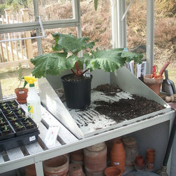 traditional greenhouses traditional glasshouses - Potting shoe, potting bench with slatted top and lower shelf, Hartley Botanic
