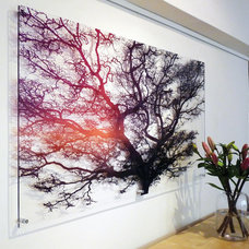 Contemporary Paintings by signarture