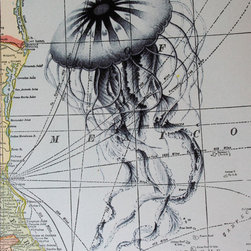 Jellyfish Print on Vintage Map Gulf of Mexico - This jellyfish print is on a vintage map of the Gulf of Mexico — definitely a unique piece with lots of character!
